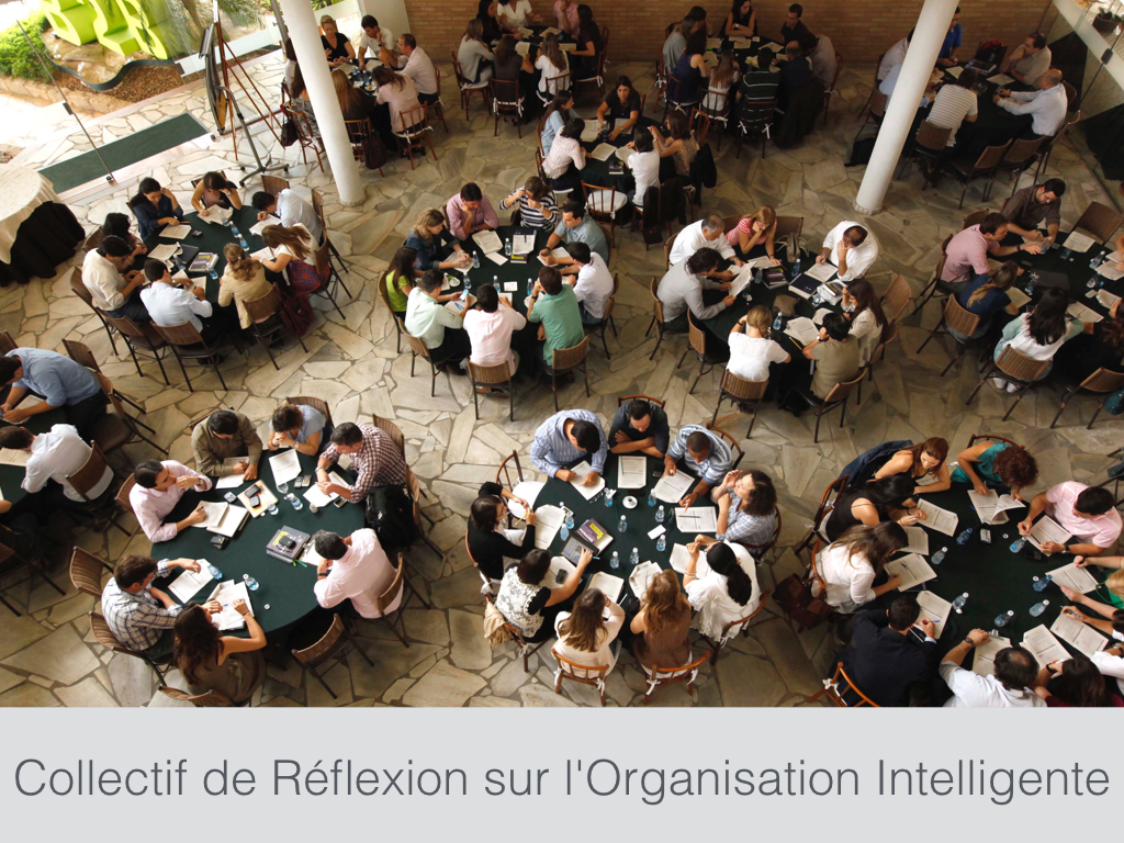 Collectif de Réflexion sur l'Organisation Intelligente